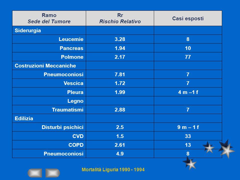Ramo Sede del Tumore Rr Rischio Relativo Casi esposti Siderurgia Leucemie3.288 Pancreas1.9410 Polmone2.1777 Costruzioni Meccaniche Pneumoconiosi7.817