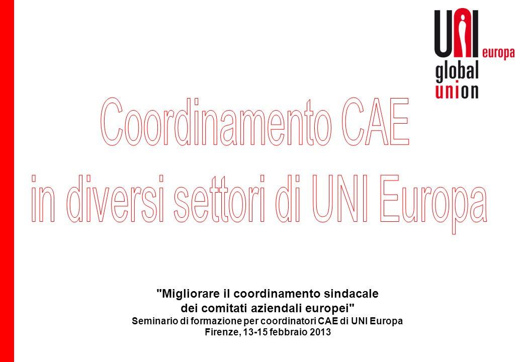 Migliorare il coordinamento sindacale dei comitati aziendali europei Seminario di formazione per coordinatori CAE di UNI Europa Firenze, 13-15 febbraio 2013