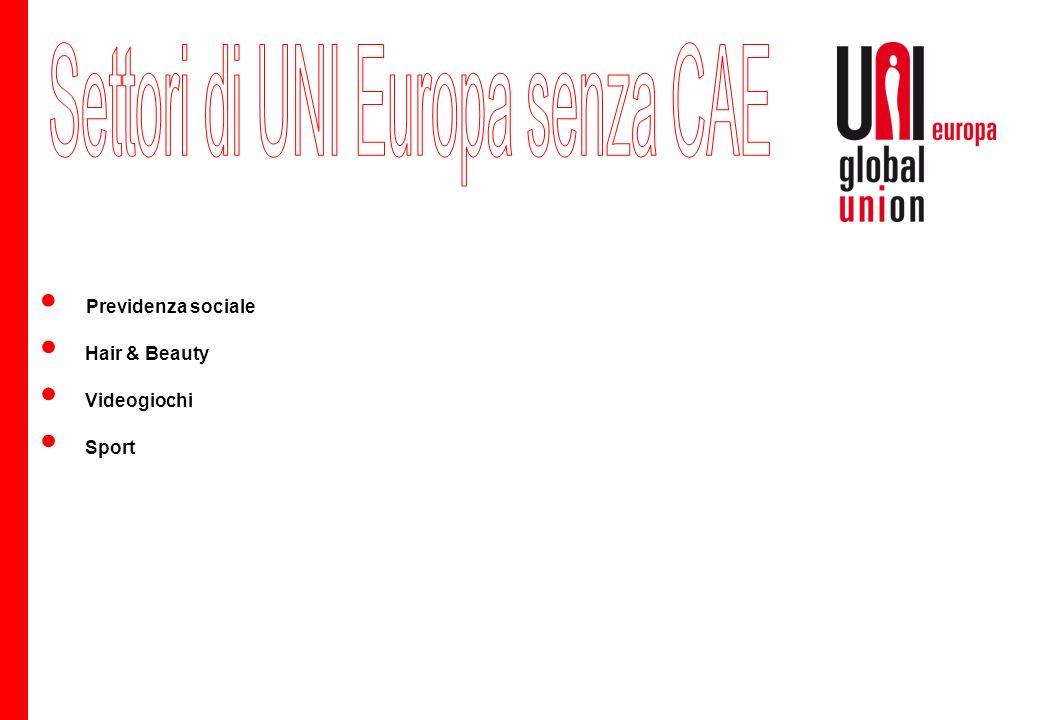 Strategia integrata per imprese multinazionali, rivista nel 2011 Il gruppo di lavoro permanente CAE di esperti CAE affiliati UEF nomina coordinatori (interni ed esterni) Responsabilità politica: presidio UEF