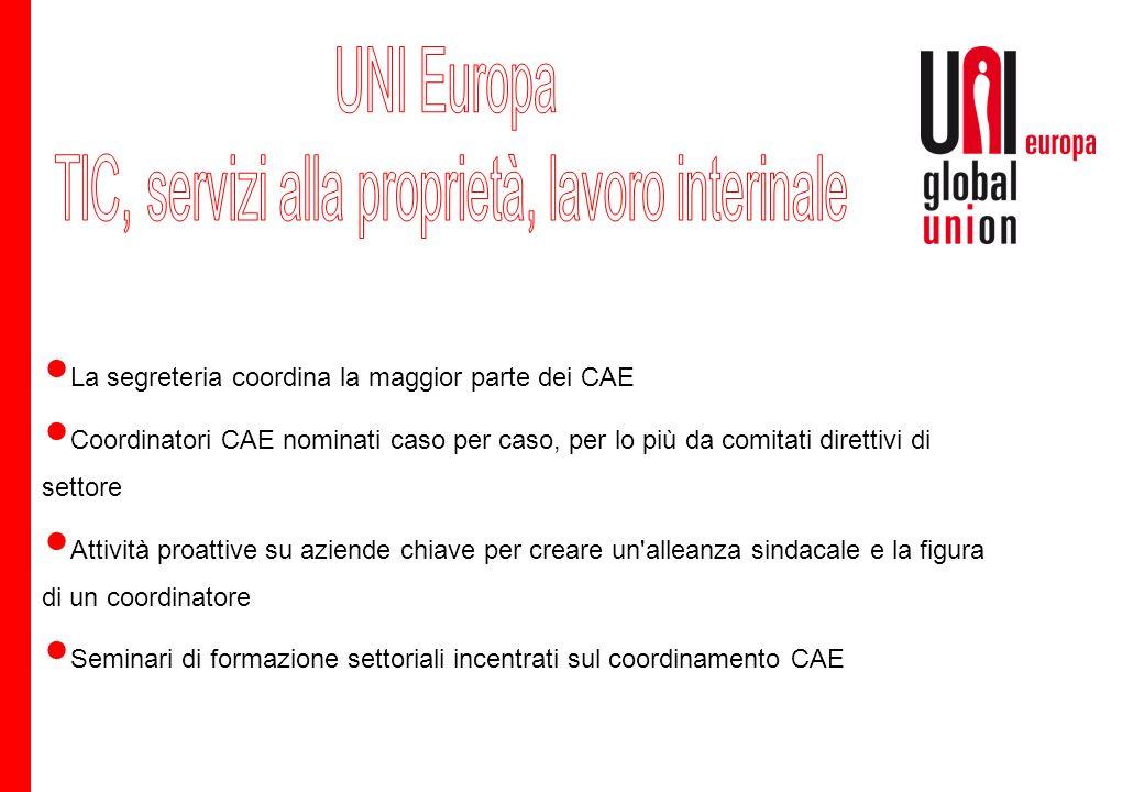 Obiettivo di stabilire uno standard comune di base I settori continueranno a funzionare abbastanza autonomamente Lavoro intersettoriale più intenso per le imprese multinazionali Importante collegare tutti i coordinatori CAE di UNI Europa!