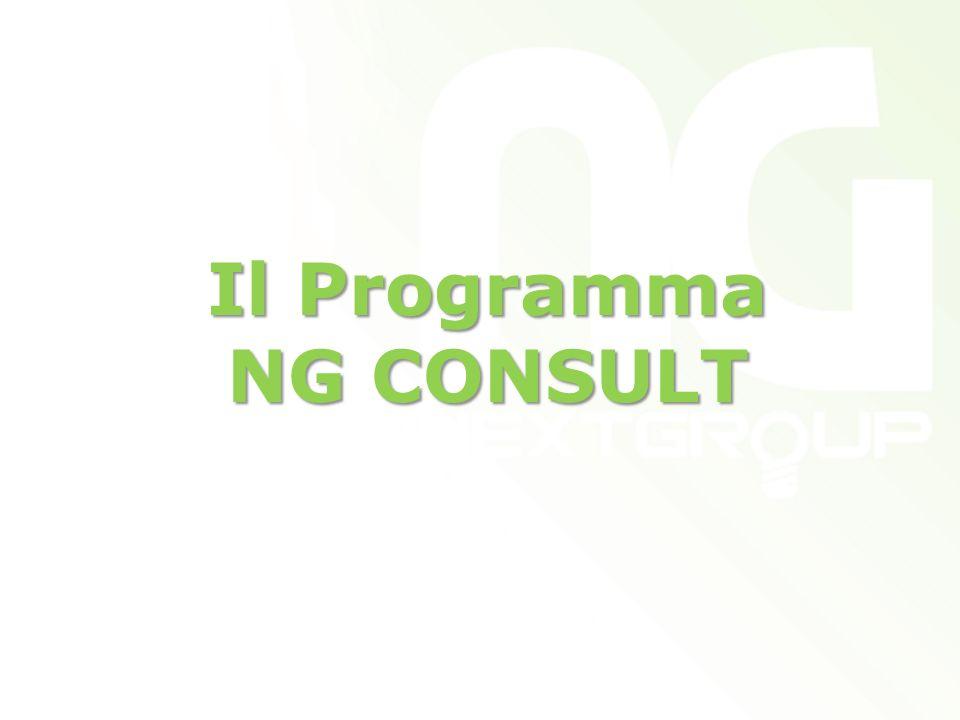 Il Programma NG CONSULT