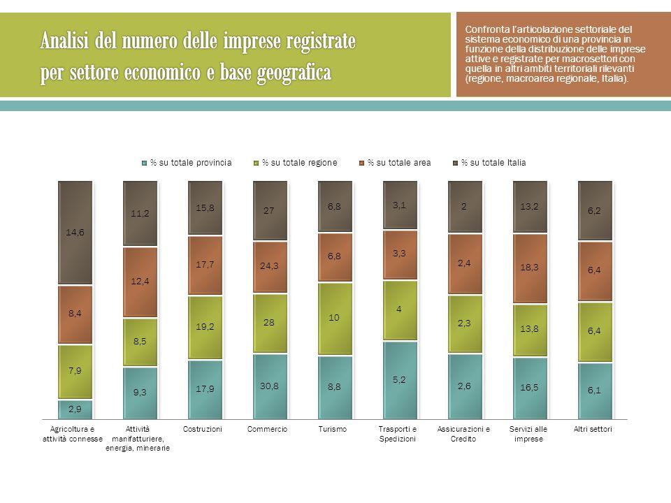Confronta larticolazione settoriale del sistema economico di una provincia in funzione della distribuzione delle imprese attive e registrate per macrosettori con quella in altri ambiti territoriali rilevanti (regione, macroarea regionale, Italia).