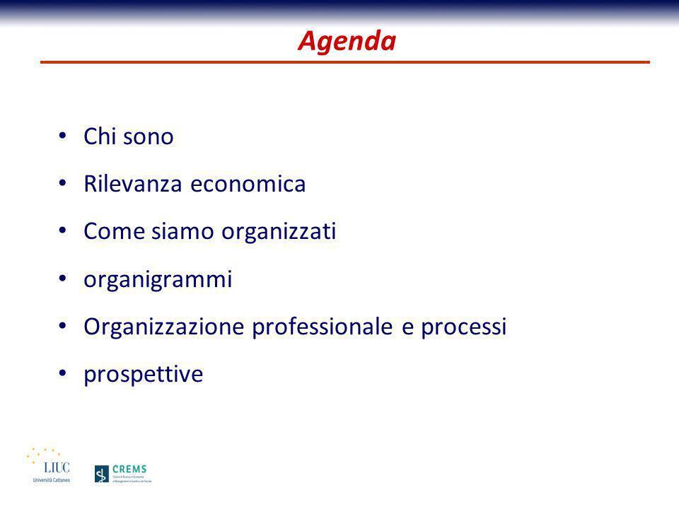 Chi sono Rilevanza economica Come siamo organizzati organigrammi Organizzazione professionale e processi prospettive Agenda