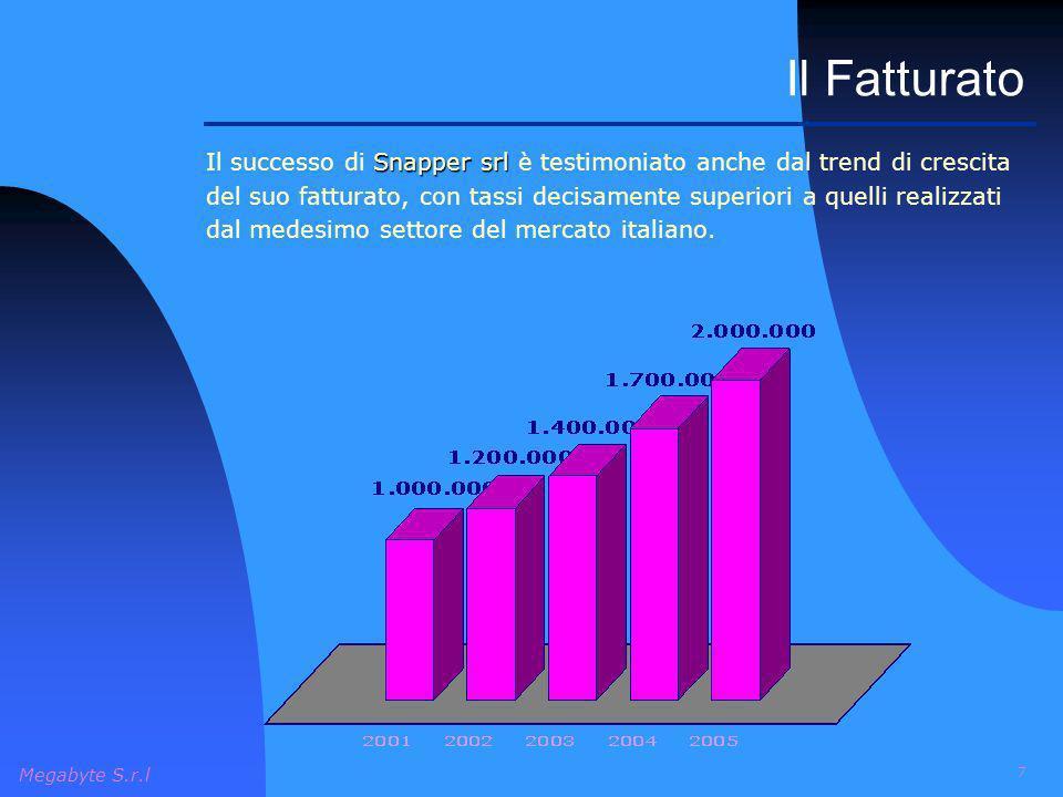 Megabyte S.r.l 7 Il Fatturato Snapper srl Il successo di Snapper srl è testimoniato anche dal trend di crescita del suo fatturato, con tassi decisamen