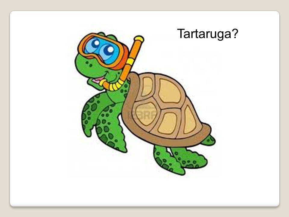 Questa tartaruga? ….no…non possiamo fare miracoli….