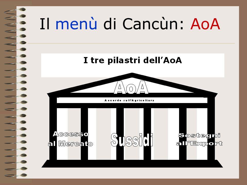 Il menù di Cancùn: AoA