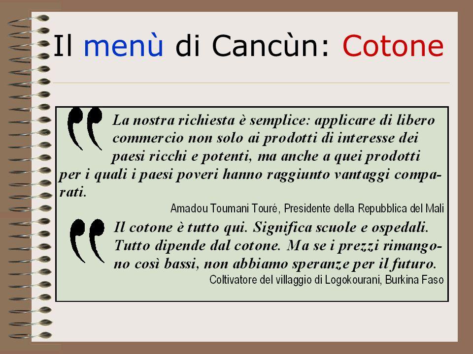 Il menù di Cancùn: Cotone