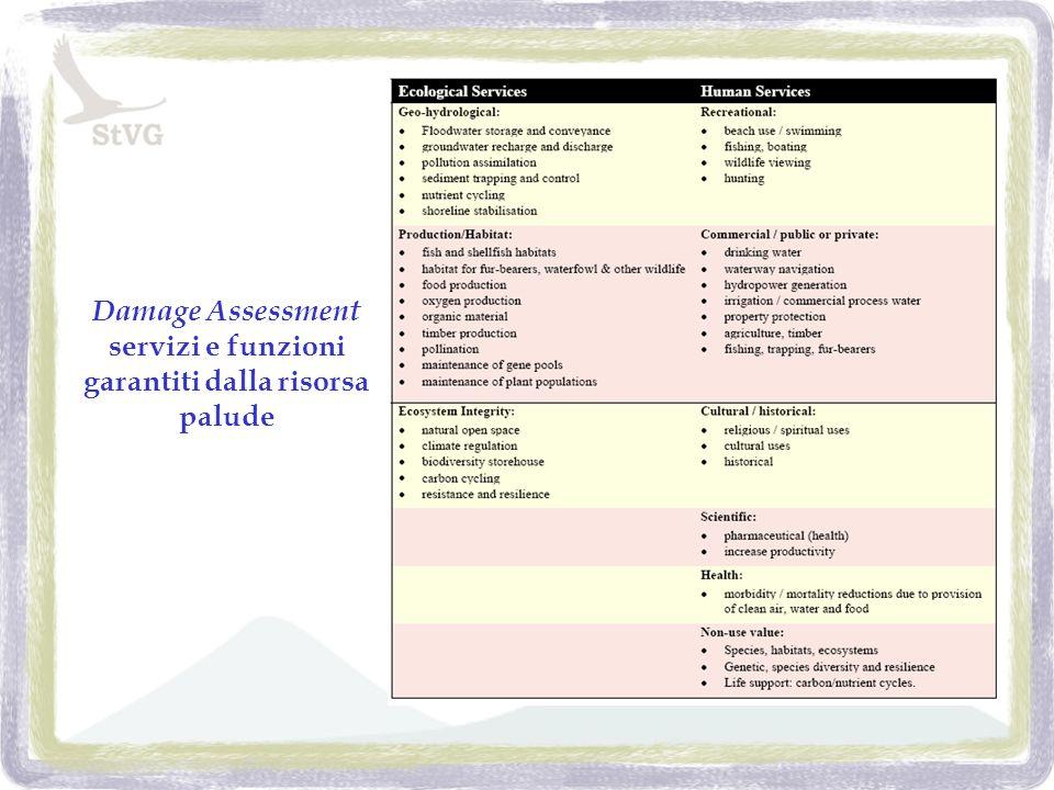 Damage Assessment servizi e funzioni garantiti dalla risorsa palude