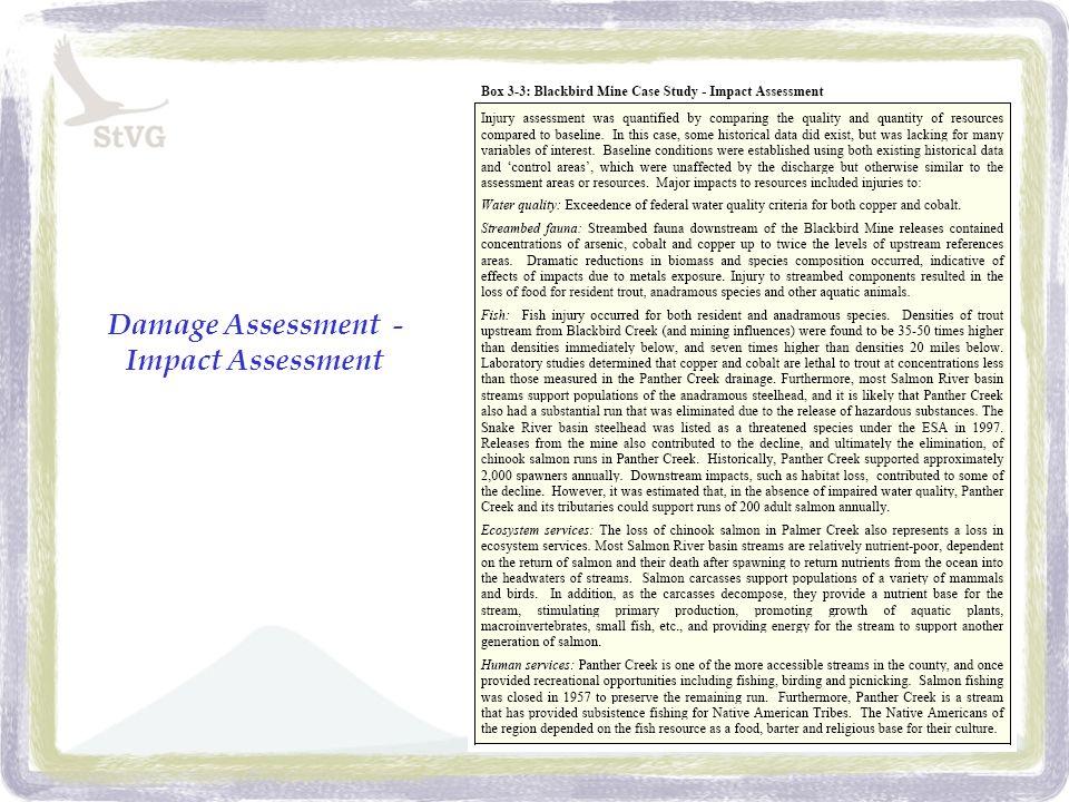 Damage Assessment - Impact Assessment