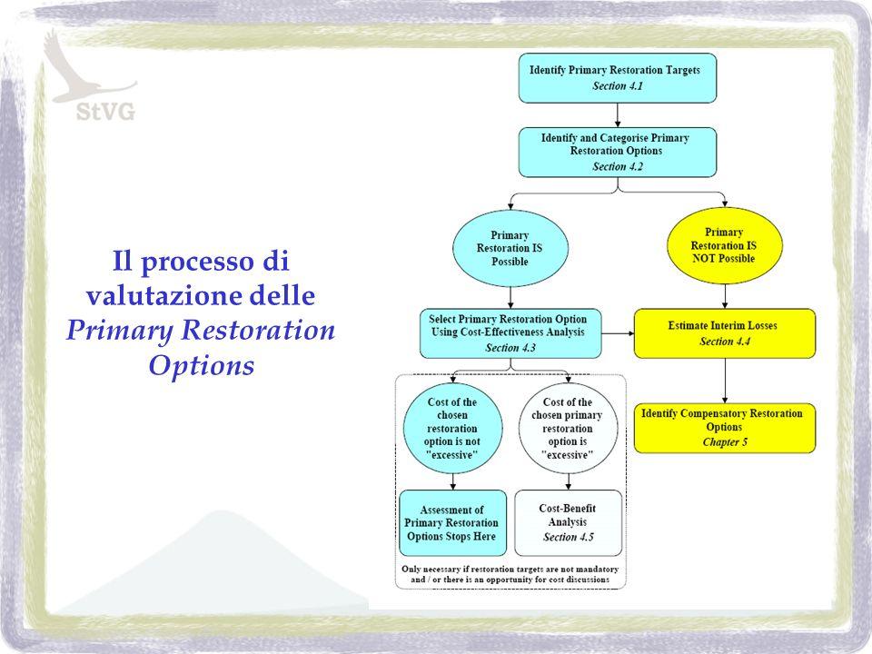 Il processo di valutazione delle Primary Restoration Options