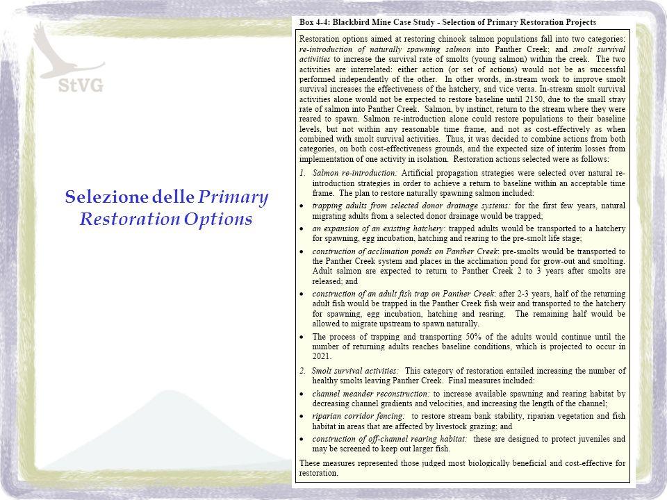 Selezione delle Primary Restoration Options