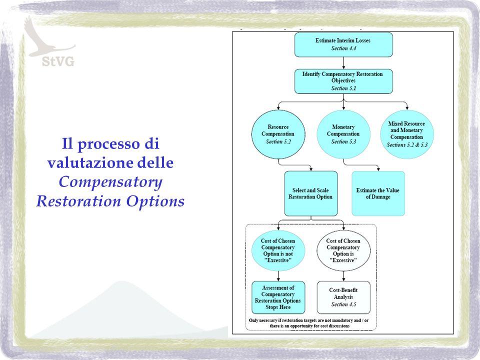 Il processo di valutazione delle Compensatory Restoration Options