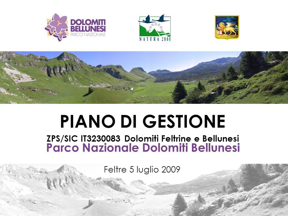 Parco Nazionale Dolomiti Bellunesi ZPS/SIC IT3230083 Dolomiti Feltrine e Bellunesi PIANO DI GESTIONE Feltre 5 luglio 2009