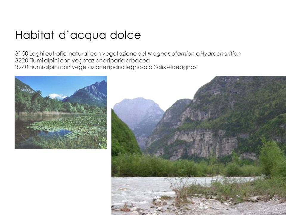Habitat dacqua dolce 3150 Laghi eutrofici naturali con vegetazione del Magnopotamion o Hydrocharition 3220 Fiumi alpini con vegetazione riparia erbace