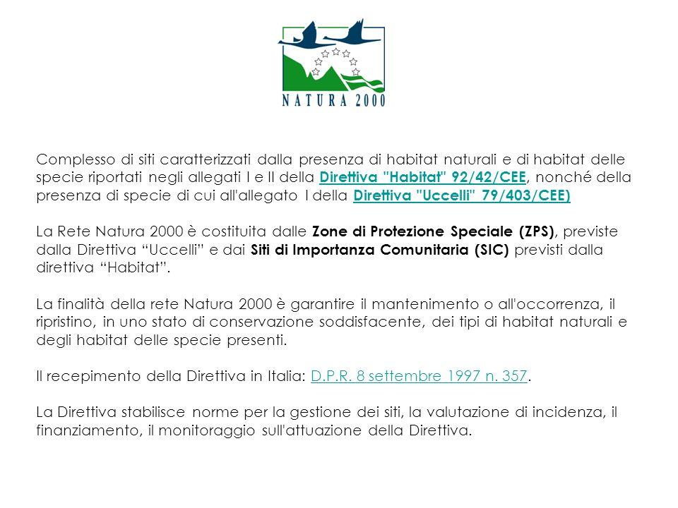 D.G.R.n. 4241 del 30.12.2008D.G.R. n.