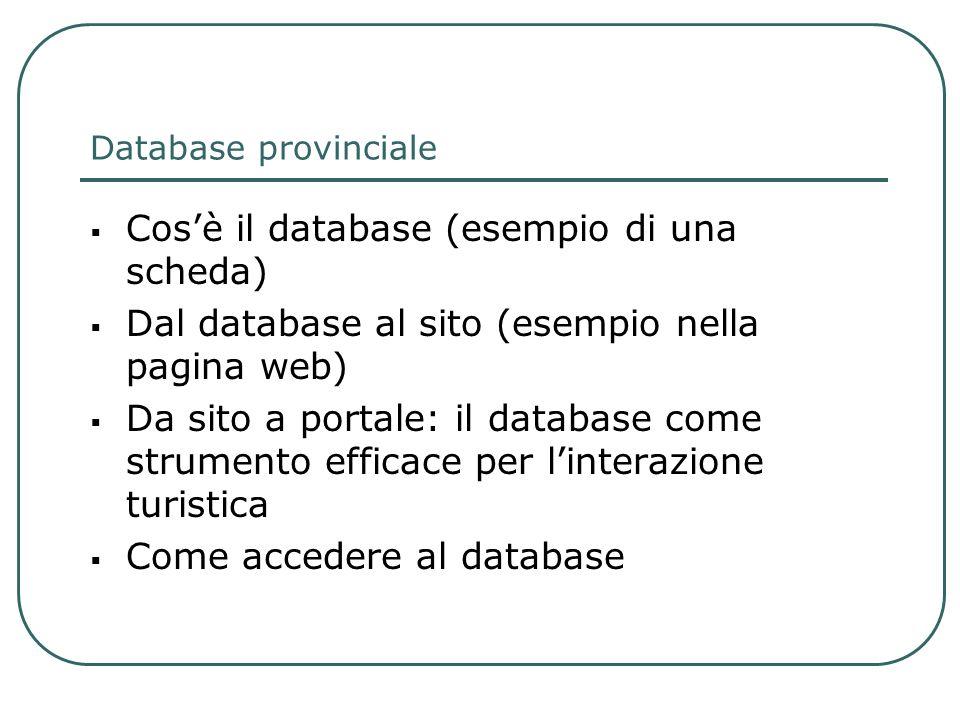 Database provinciale Cosè il database (esempio di una scheda) Dal database al sito (esempio nella pagina web) Da sito a portale: il database come stru