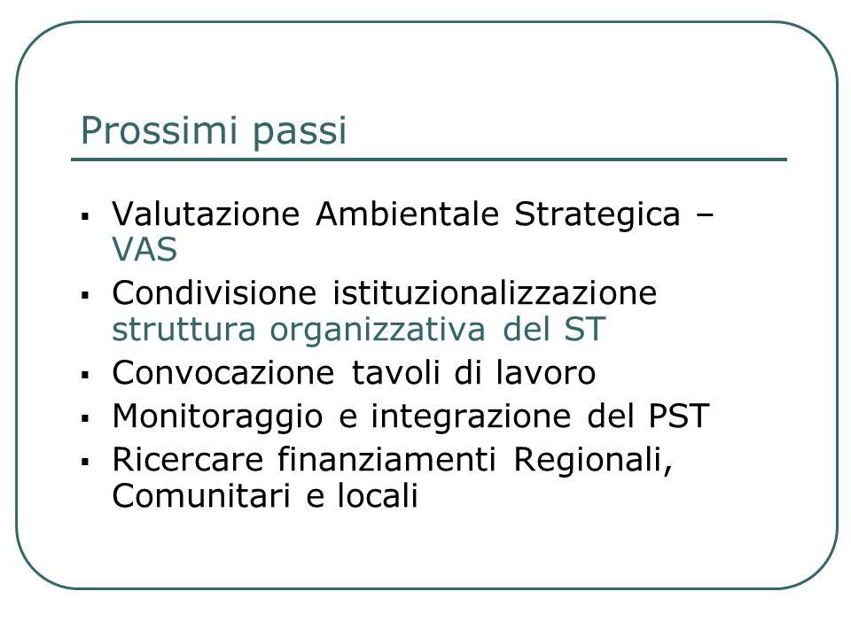 Prossimi passi Valutazione Ambientale Strategica – VAS Condivisione istituzionalizzazione struttura organizzativa del ST Convocazione tavoli di lavoro