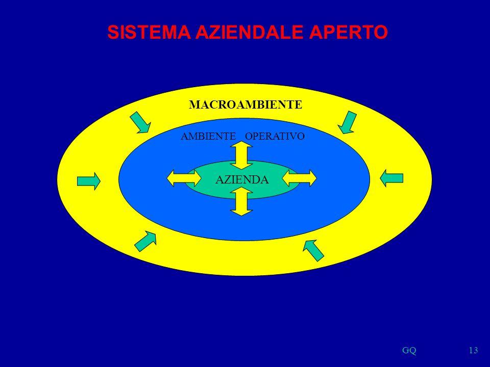 GQ13 AZIENDA AMBIENTE OPERATIVO MACROAMBIENTE SISTEMA AZIENDALE APERTO