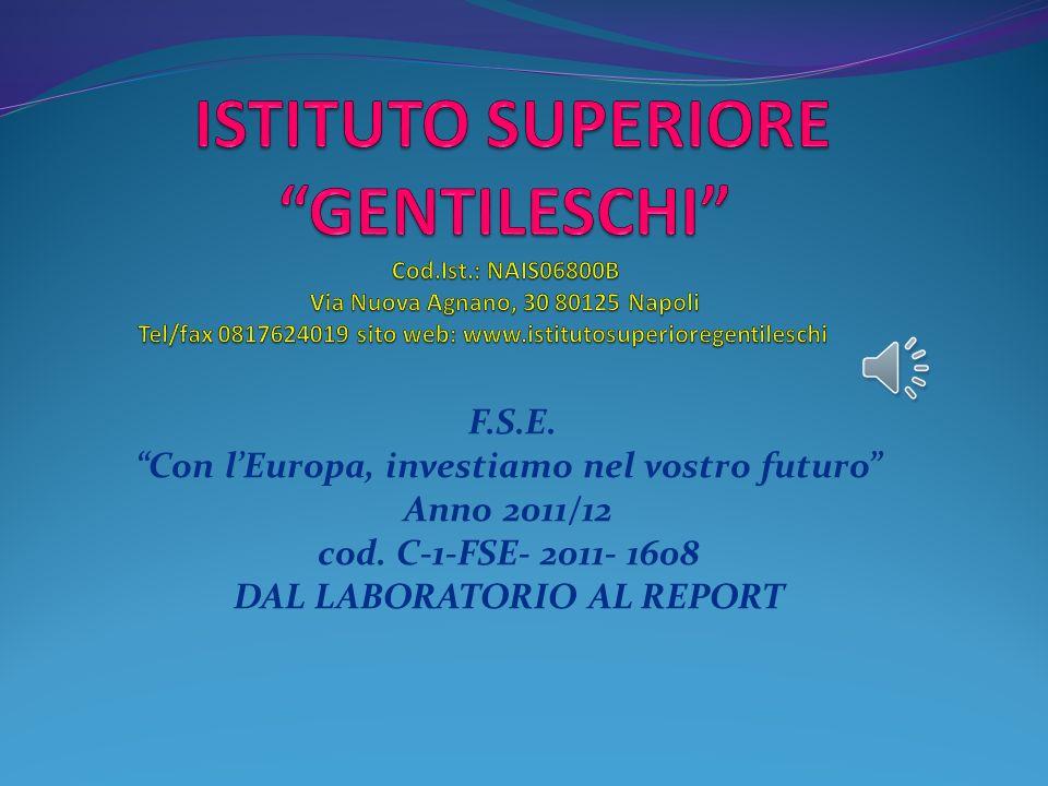F.S.E.Con lEuropa, investiamo nel vostro futuro Anno 2011/12 cod.