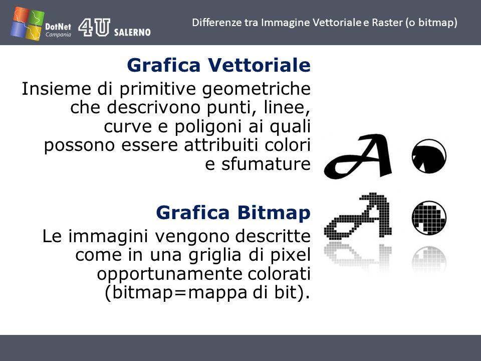 Differenze tra Immagine Vettoriale e Raster (o bitmap) Grafica Vettoriale Insieme di primitive geometriche che descrivono punti, linee, curve e poligo