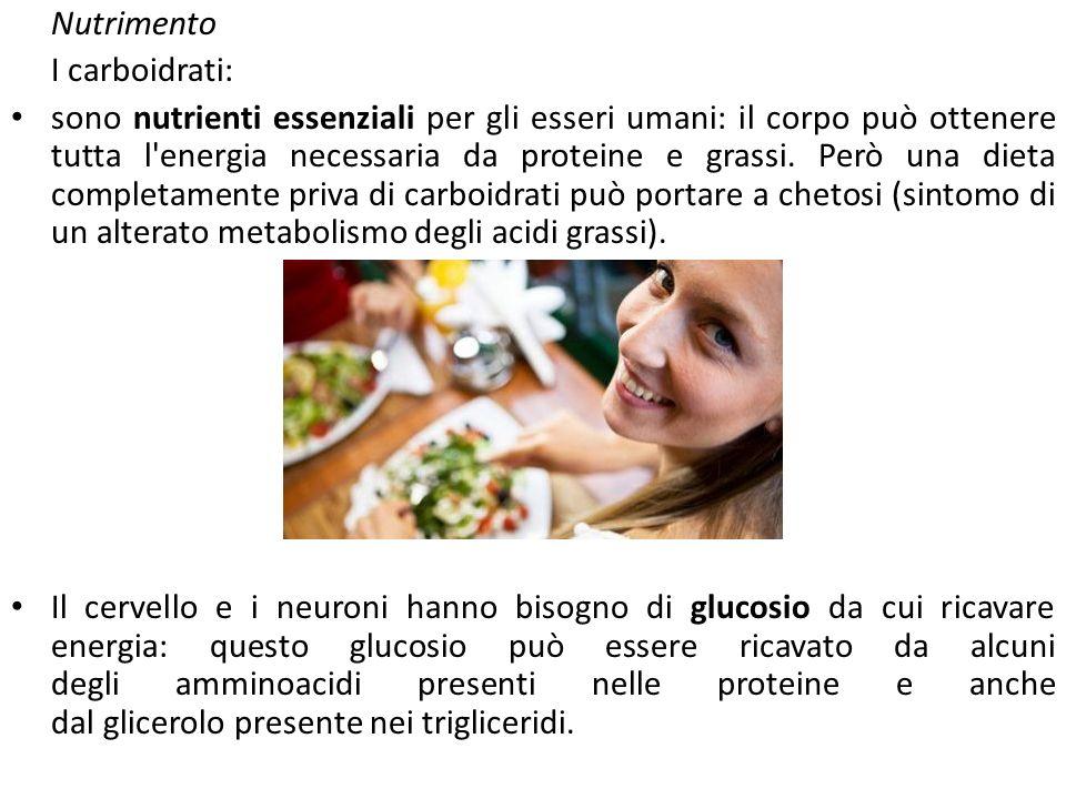 Nutrimento I carboidrati: sono nutrienti essenziali per gli esseri umani: il corpo può ottenere tutta l energia necessaria da proteine e grassi.
