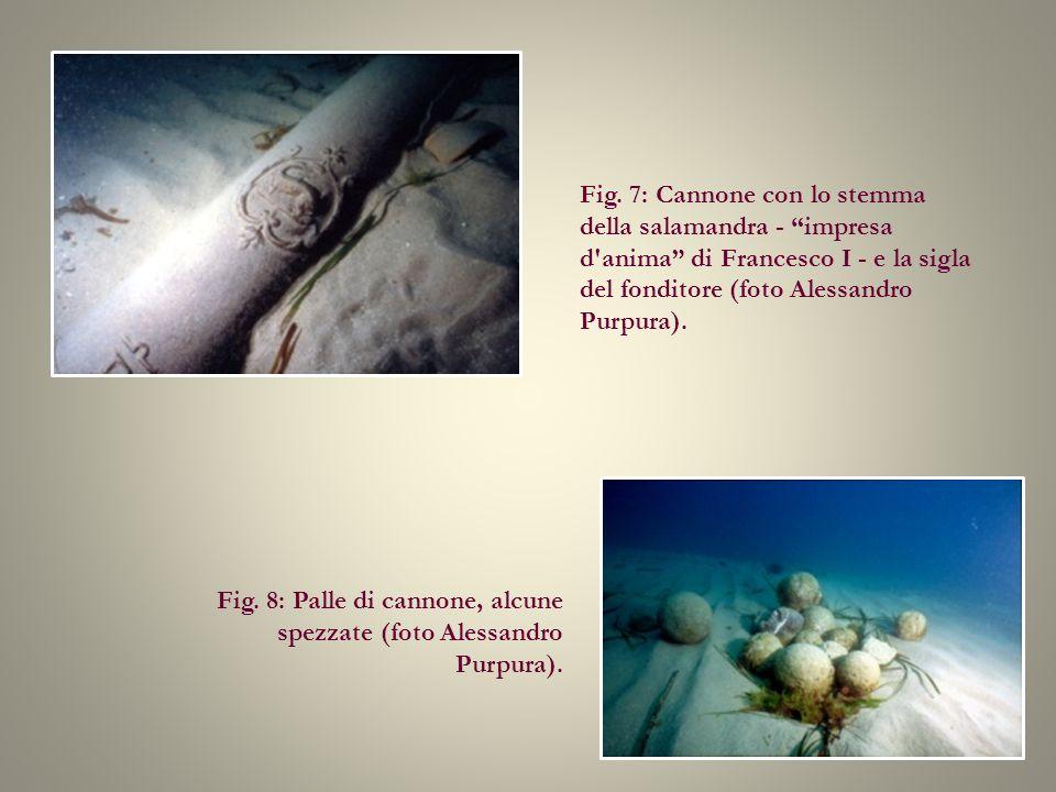 Fig. 7: Cannone con lo stemma della salamandra - impresa d'anima di Francesco I - e la sigla del fonditore (foto Alessandro Purpura). Fig. 8: Palle di
