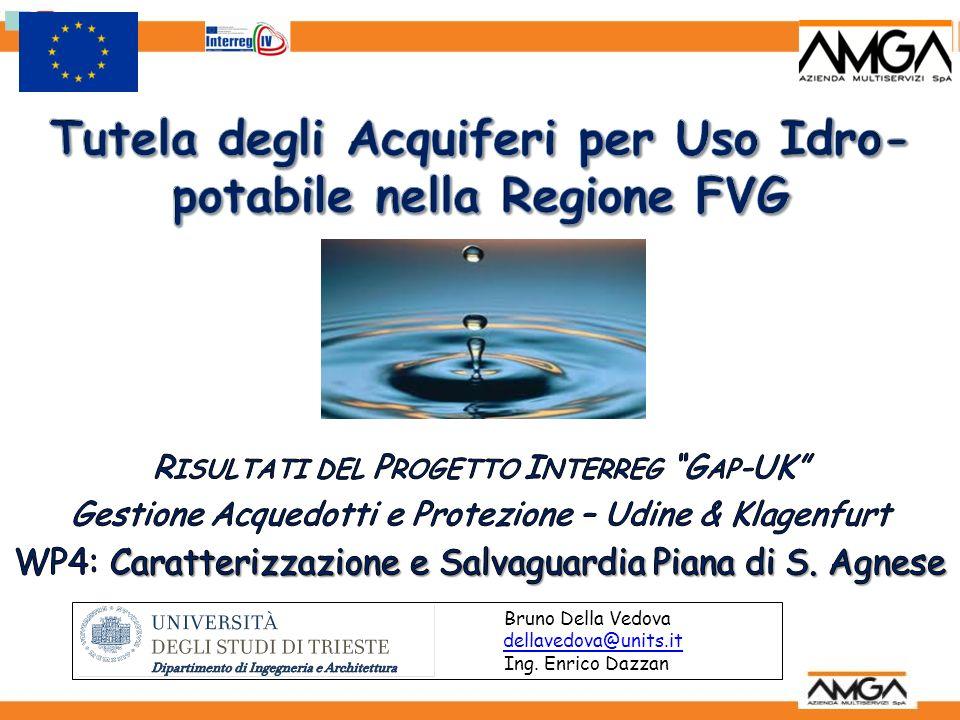 Bruno Della Vedova dellavedova@units.it Ing. Enrico Dazzan