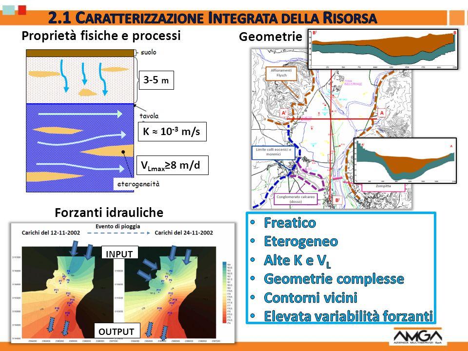 Geometrie Proprietà fisiche e processi 3-5 m K 10 -3 m/s V Lmax 8 m/d Forzanti idrauliche INPUT OUTPUT