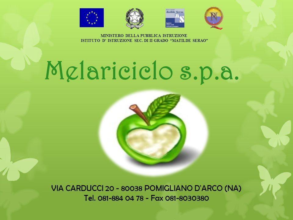 Melariciclo s.p.a. VIA CARDUCCI 20 - 80038 POMIGLIANO D'ARCO (NA) Tel. 081-884 04 78 - Fax 081-8030380 MINISTERO DELLA PUBBLICA ISTRUZIONE ISTITUTO D
