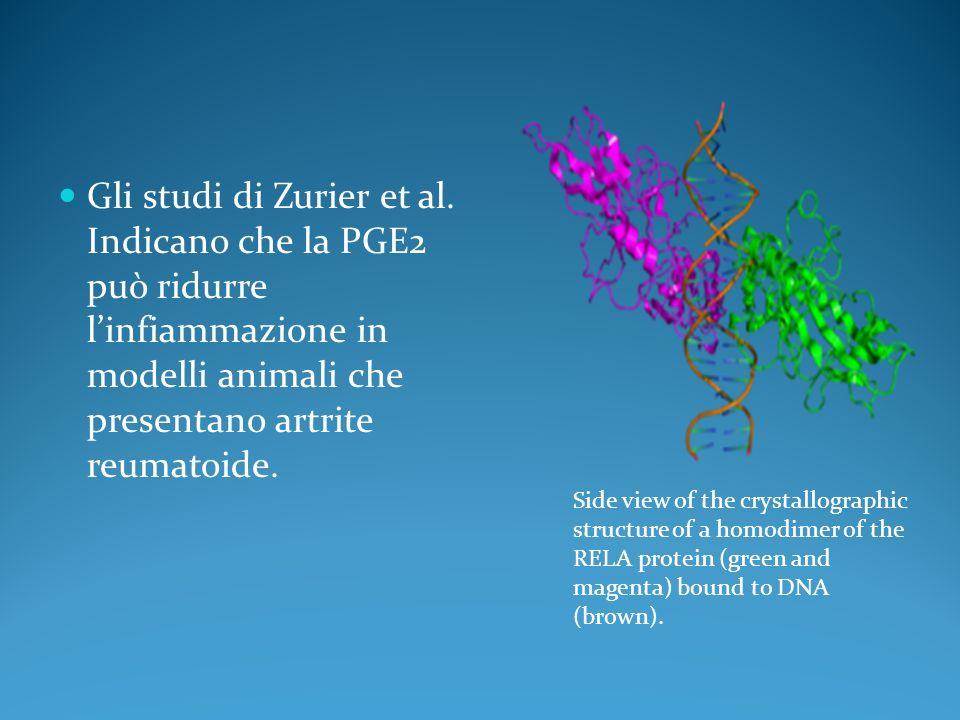 Gli studi di Zurier et al. Indicano che la PGE2 può ridurre linfiammazione in modelli animali che presentano artrite reumatoide. Side view of the crys