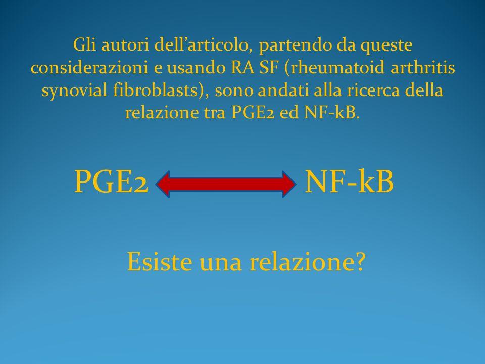 Gli autori dellarticolo, partendo da queste considerazioni e usando RA SF (rheumatoid arthritis synovial fibroblasts), sono andati alla ricerca della