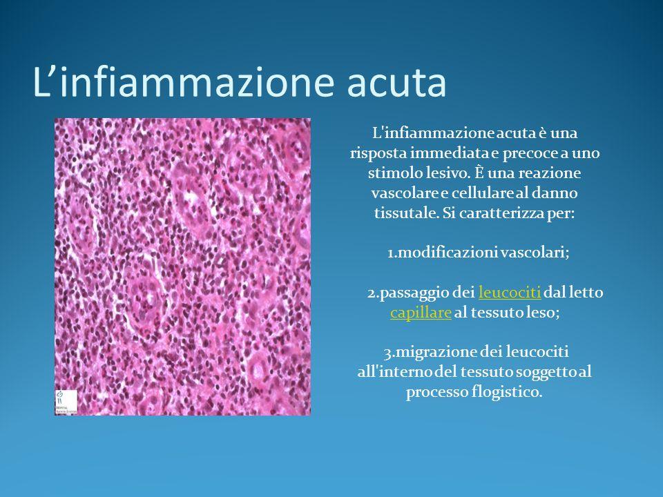Linfiammazione acuta L'infiammazione acuta è una risposta immediata e precoce a uno stimolo lesivo. È una reazione vascolare e cellulare al danno tiss
