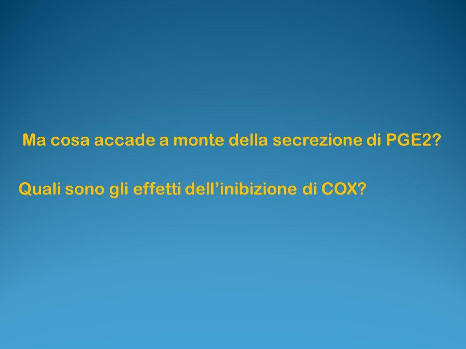 Ma cosa accade a monte della secrezione di PGE2? Quali sono gli effetti dellinibizione di COX?