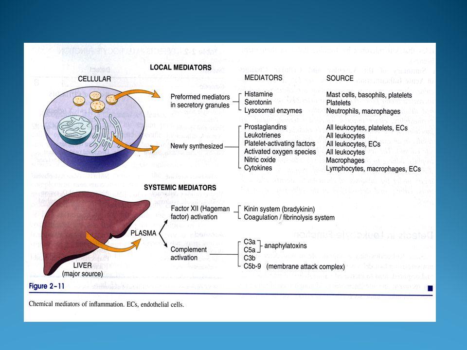 Contrariamente alla maggior parte degli ormoni, che sono prodotti in ghiandole specializzate e poi trasportati in tutto il corpo dal sangue, le prostaglandine vengono sintetizzate dalle cellule e poi agiscono solo nell area circostante prima di venire demolite.