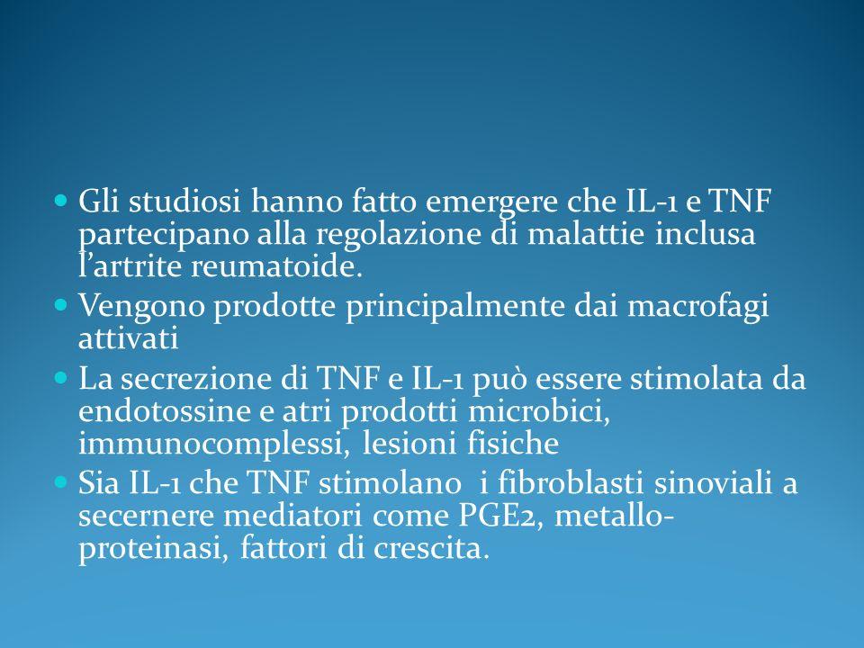 Gli studiosi hanno fatto emergere che IL-1 e TNF partecipano alla regolazione di malattie inclusa lartrite reumatoide. Vengono prodotte principalmente