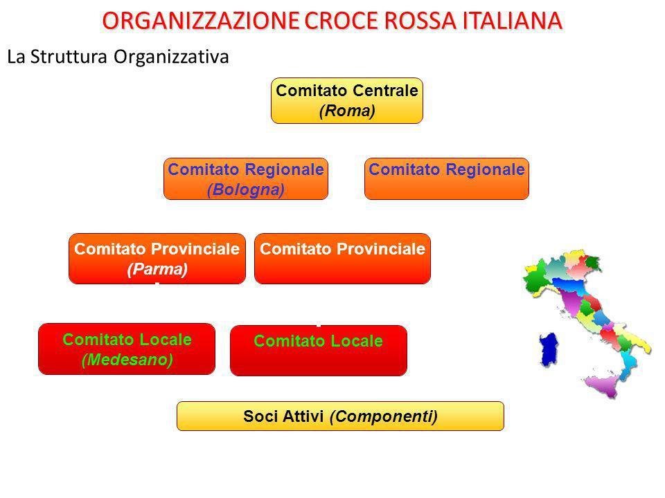 La Struttura Organizzativa Comitato Locale ORGANIZZAZIONE CROCE ROSSA ITALIANA