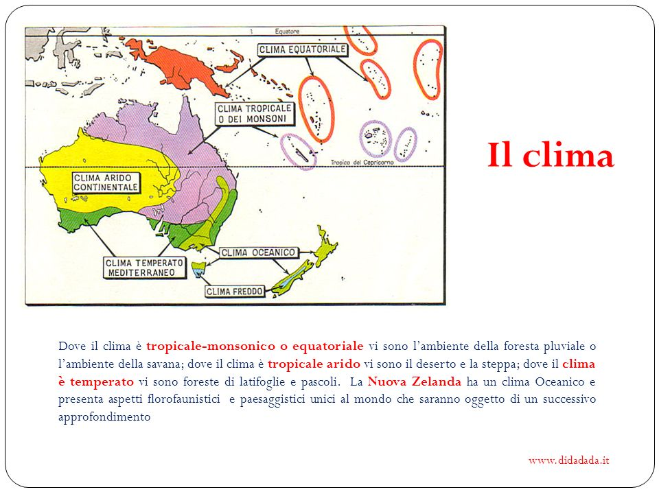 Il clima Dove il clima è tropicale-monsonico o equatoriale vi sono lambiente della foresta pluviale o lambiente della savana; dove il clima è tropical