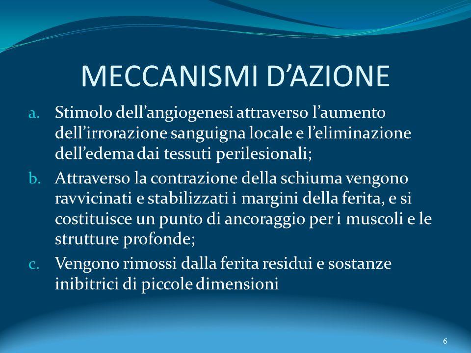 MECCANISMI DAZIONE a. Stimolo dellangiogenesi attraverso laumento dellirrorazione sanguigna locale e leliminazione delledema dai tessuti perilesionali