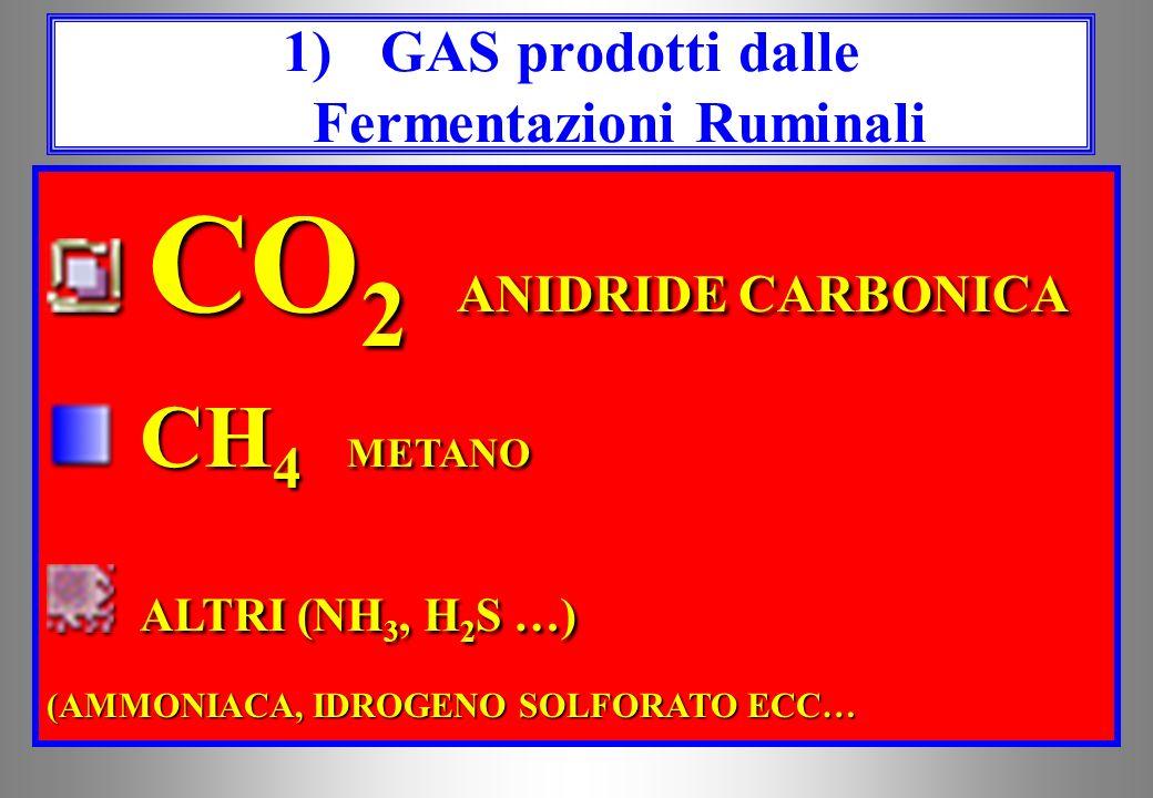 GAS GAS Acidi Grassi Volatili Acidi Grassi Volatili CORPI MICROBICI CORPI MICROBICI Prodotti delle Fermentazioni Ruminali