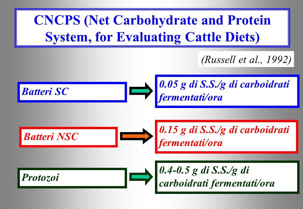 I carboidrati costituiscono il substrato energetico per le fermentazioni batteriche (e dei microrganismi in genere) e Substrati per le Fermentazioni R