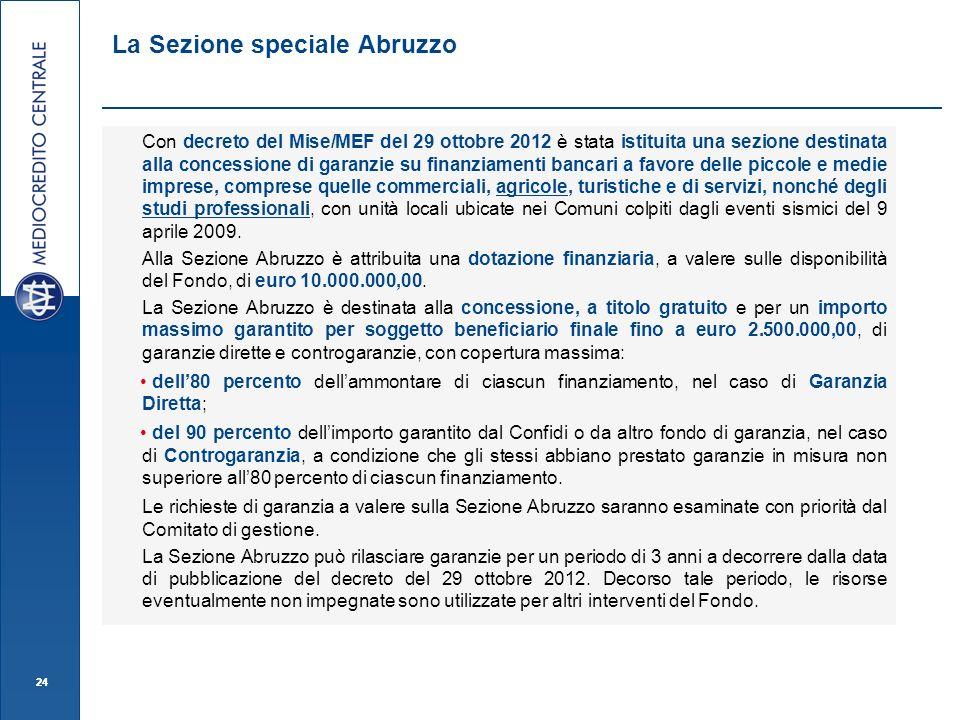 24 Con decreto del Mise/MEF del 29 ottobre 2012 è stata istituita una sezione destinata alla concessione di garanzie su finanziamenti bancari a favore