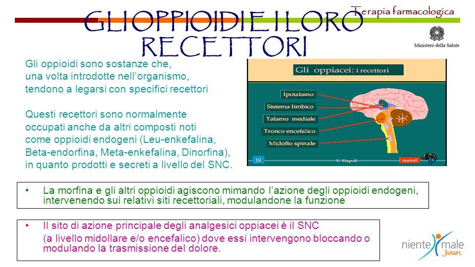 GLI OPPIOIDI E I LORO RECETTORI Gli oppioidi sono sostanze che, una volta introdotte nellorganismo, tendono a legarsi con specifici recettori Questi r