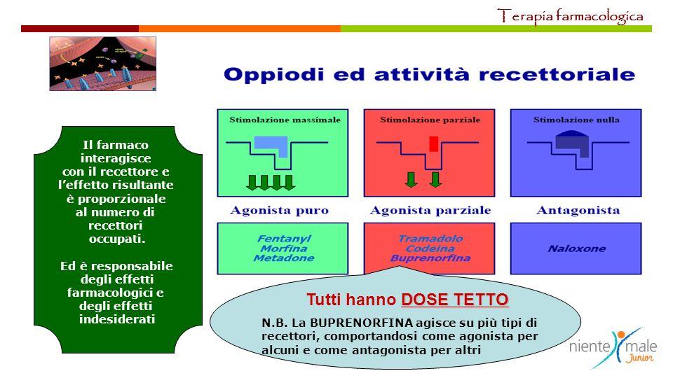 Il farmaco interagisce con il recettore e leffetto risultante è proporzionale al numero di recettori occupati. Ed è responsabile degli effetti farmaco