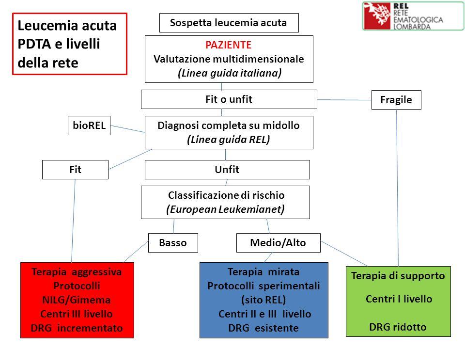 Sospetta leucemia acuta PAZIENTE Valutazione multidimensionale (Linea guida italiana) Terapia di supporto Centri I livello DRG ridotto Fragile Fit o u