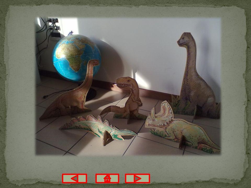 Alcuni giorni dopo il papà di Alberto ci ha mandato un bellissimo regalo: cinque diversi e bellissimi dinosauri, che sembrano veri, di cartone rigido e che stanno in piedi.