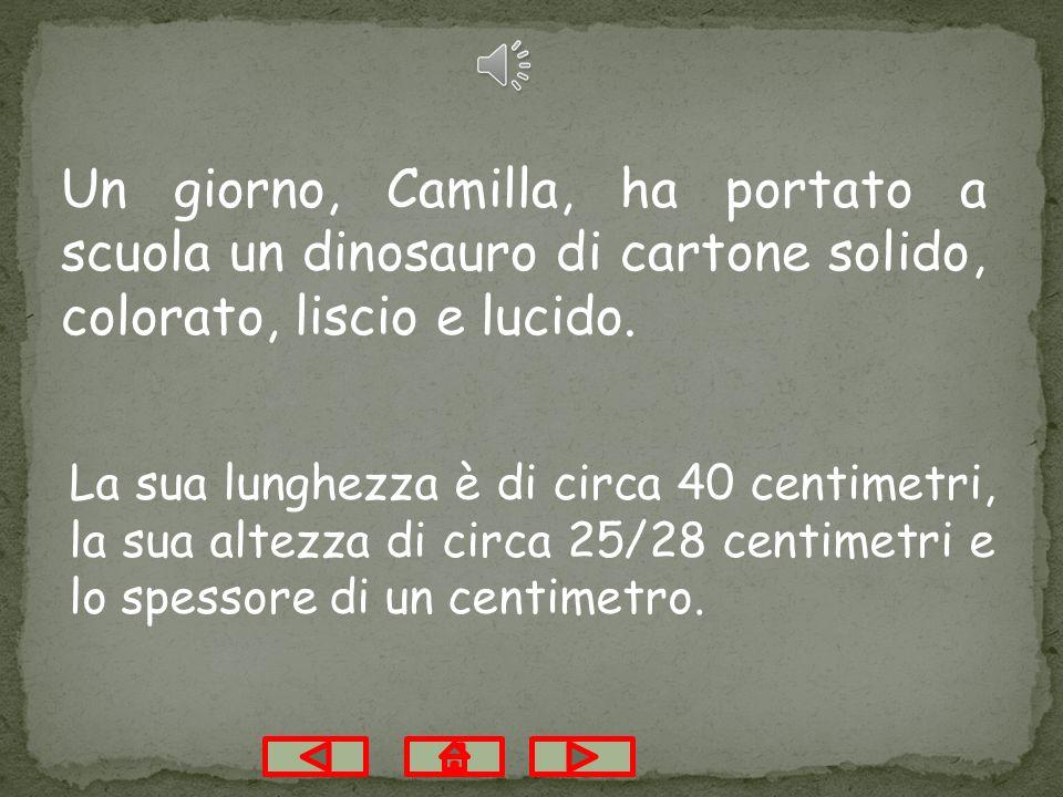 Un giorno, Camilla, ha portato a scuola un dinosauro di cartone solido, colorato, liscio e lucido.
