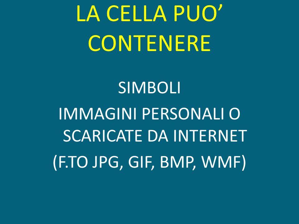 LA CELLA PUO CONTENERE SIMBOLI IMMAGINI PERSONALI O SCARICATE DA INTERNET (F.TO JPG, GIF, BMP, WMF)