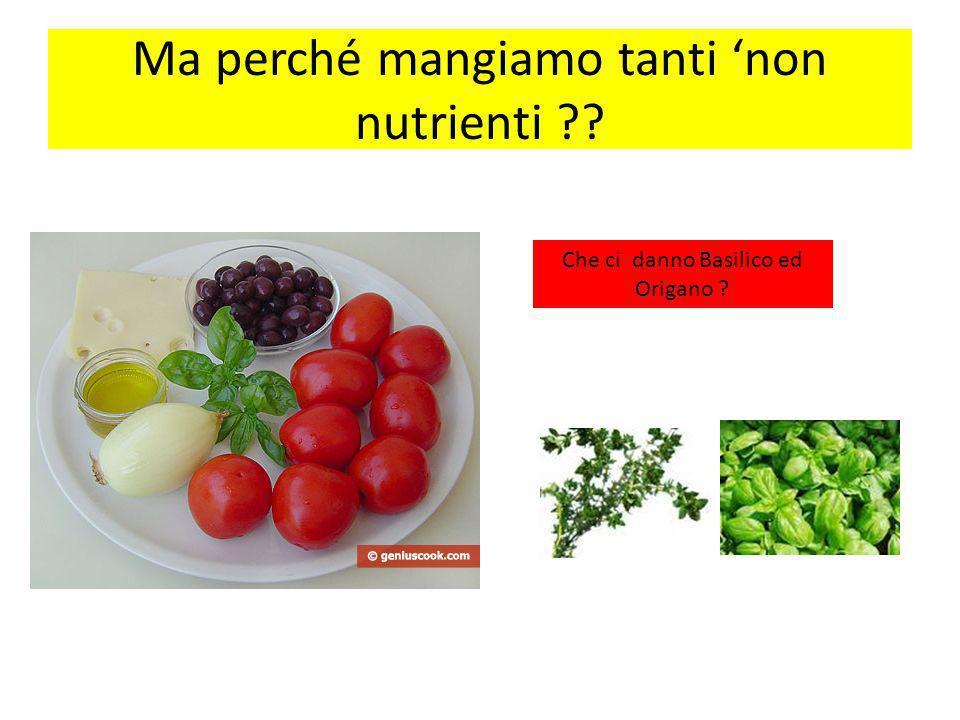 Ma perché mangiamo tanti non nutrienti ?? Che ci danno Basilico ed Origano ?