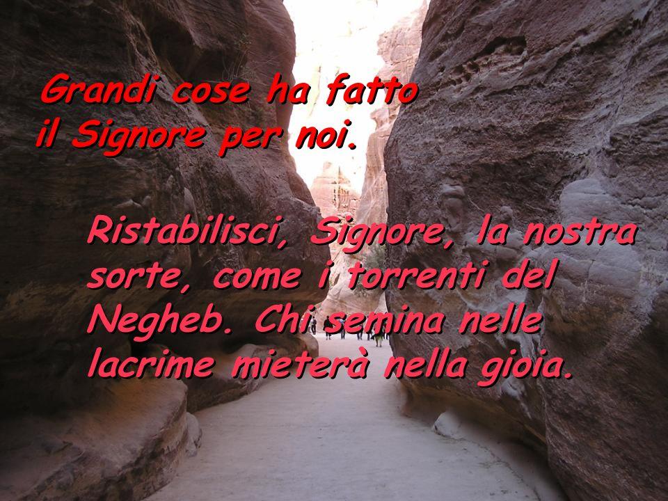 Ristabilisci, Signore, la nostra sorte, come i torrenti del Negheb.