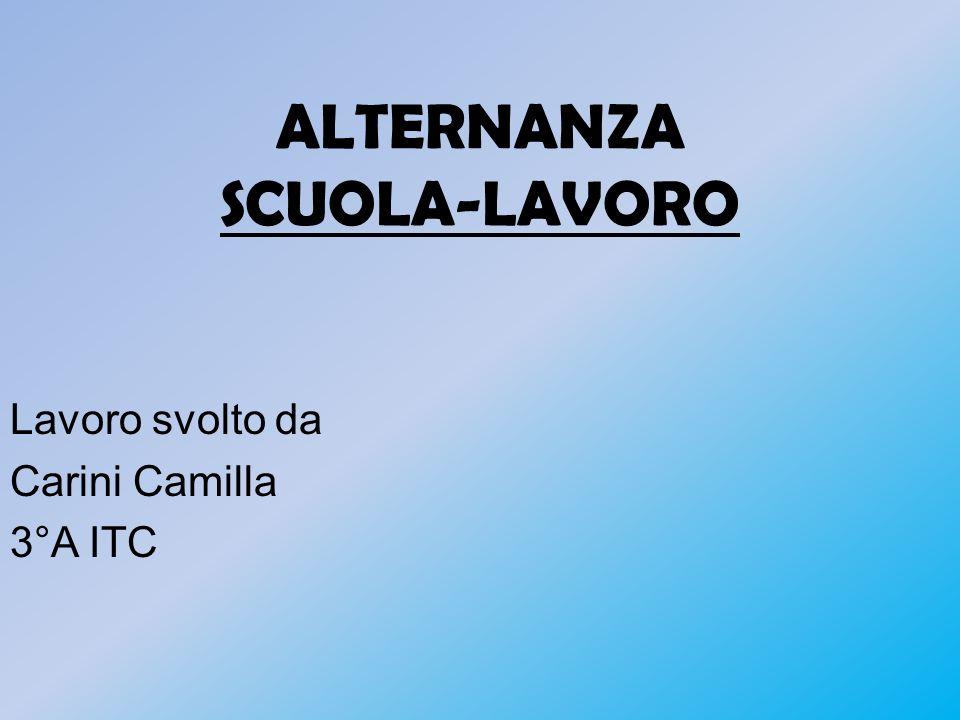 ALTERNANZA SCUOLA-LAVORO Lavoro svolto da Carini Camilla 3°A ITC